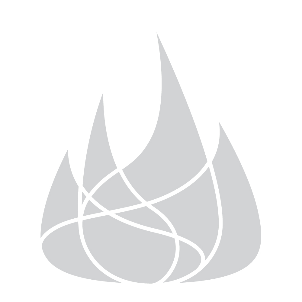 Dagan Black Panel Fireplace Screen with Leaf Design
